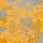 Flowersorangewitblue
